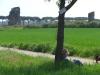 Parco degli Aquedotti Roma